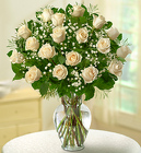 Rose Elegance Premium <BR>Long Stem White Roses Davis Floral Clayton Indiana from Davis Floral