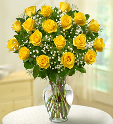 Rose Elegance Premium<br> Long Stem Yellow Roses Davis Floral Clayton Indiana from Davis Floral