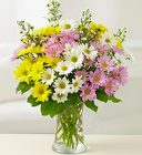 One Dozen Daisies <br>Arranged in a Vase  Davis Floral Clayton Indiana from Davis Floral