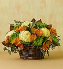 Fall Chrysanthemum<BR> Centerpiece  Davis Floral Clayton Indiana from Davis Floral