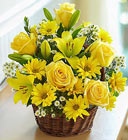 Basket of Sunshine Davis Floral Clayton Indiana from Davis Floral