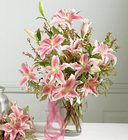 Sympathy flowers and plants for the home or office