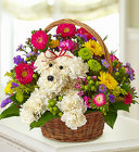 a-DOG-able™ <BR>in a Basket Davis Floral Clayton Indiana from Davis Floral
