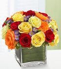 Rainbow of Roses Davis Floral Clayton Indiana from Davis Floral