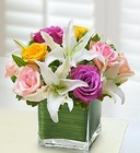 Pastel Rose and White <br>Lily Cube Bouquet Davis Floral Clayton Indiana from Davis Floral