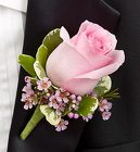 Pink Boutonniere Davis Floral Clayton Indiana from Davis Floral