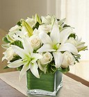 Modern Embrace <br> White Rose and Lily Cube Davis Floral Clayton Indiana from Davis Floral