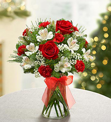 Fields of Europe<br> for Christmas Davis Floral Clayton Indiana from Davis Floral