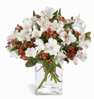 Winter Elegance Bouquet Davis Floral Clayton Indiana from Davis Floral