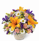 Natural Wonders Bouquet Davis Floral Clayton Indiana from Davis Floral