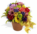 Fresh Blossom Potpourri Davis Floral Clayton Indiana from Davis Floral